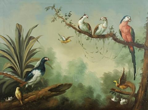 birds of the tropics by ira monte