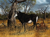 sable antelope by gary r. swanson