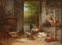 roosters feeding in a coop by g. angelvy