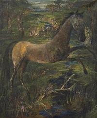 the colt by darrel austin