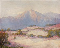 desert verbena by joseph p. frey