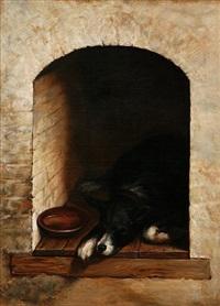 sleeping dog by j. peellaert