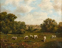 sheep grazing in wooded landscape by howard hulsmann