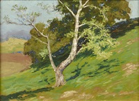 mt. taylor from bartholf park (estes park); haystacks; tree on mountainside (3 works) by charles partridge adams