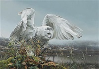 white owl about to take flight by rod frederick