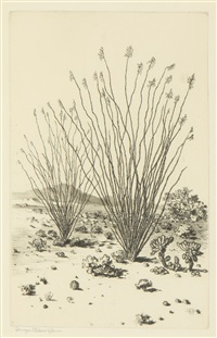 little canyon, arizona; ocotillo, arizona; near needles, arizona night (3 works) by george elbert burr