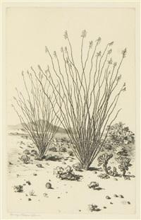 little canyon, arizona; ocotillo, arizona; near needles, arizona night (3 works) by george elbert burr