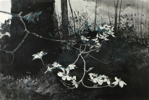 dogwood by andrew wyeth