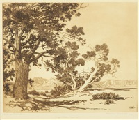piñon trees, new mexico; mesa encantada, new mexico (no. 1) (2 works) by george elbert burr