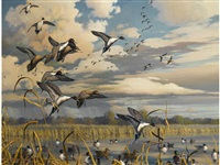 ducks flighting off a marsh by harry curieux adamson