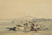 wild horses at play, pl. 3, from catlin's north american indian portfolio by george catlin