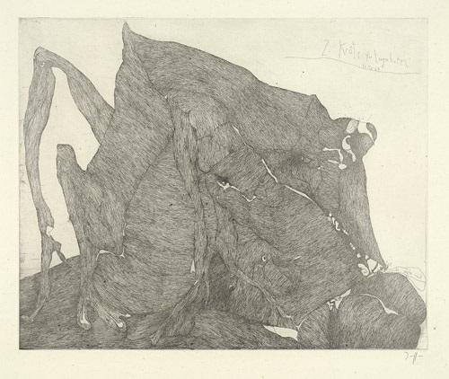 zweite kröte für langenhorn by horst janssen