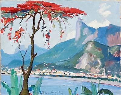 view of rio de janeiro by paul paulo gagarin