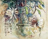 上海植物园温室盆花 by ren weiyin