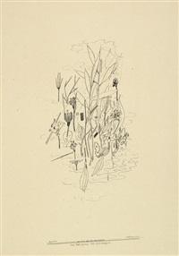 das wachsen der pflanzen by otto hofmann