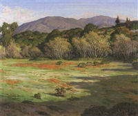 poppies and sycamores near los gatos, california by warren chase merritt