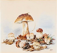 mushrooms in a forest floor by olga (grand duchess) alexandrovna