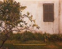 lemon bush, bermuda from altered landscape series by john pfahl