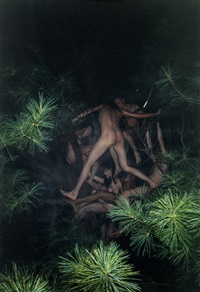 tree #1 by ryan mcginley
