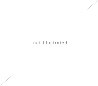 accrochage - armleder, condo, dokoupil, kropf, mosset, pancrazzi by olivier mosset