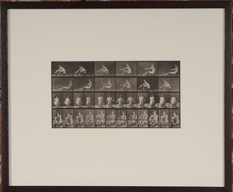 animal locomotion plate 327 rowling by eadweard muybridge