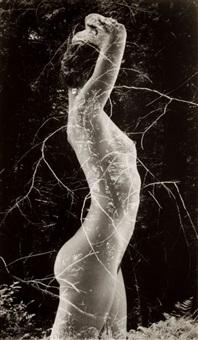 symbiosis by ruth bernhard