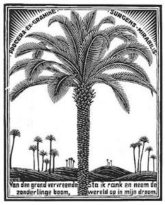 palm tree by m. c. escher