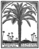 palm tree by m. c. escher