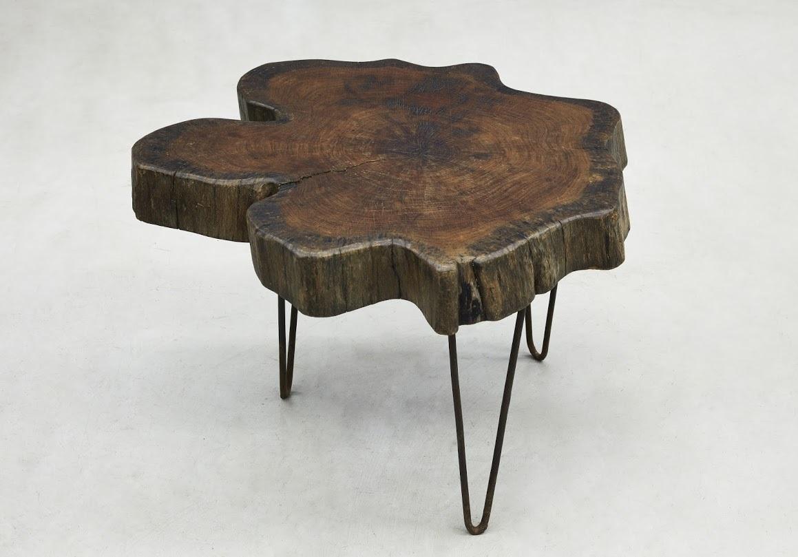 Tree Trunk Coffee Table By Pierre Jeanneret