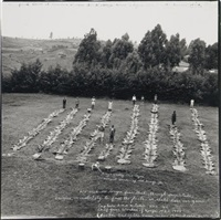 the front lawn at aberdare by peter beard