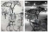 washington square park, new york (2 works) by andré kertész