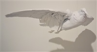 dove by zhang dali