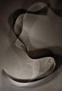 photogram 04 by thomas ruff