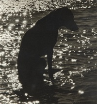 on the lake by william wegman