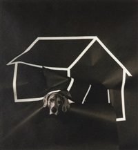 dog house by william wegman