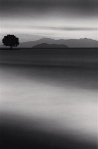 biwa lake tree, omi, honshu, japan by michael kenna