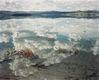 mono lake, california by richard misrach