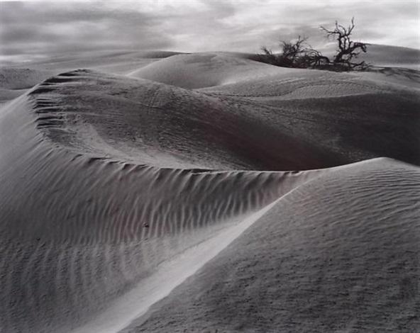 Edward Weston   artnet