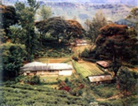 somerset tea plantation, near nuwara eliya, sri lanka by virginia beahan & laura mcphee