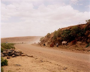 ethiopian landscape iv by richard billingham