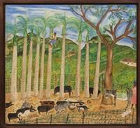 Untitled (Haitian Pig Farm), ca. 1959