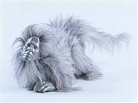 <!--57-->monkey by rona pondick