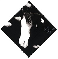 horses by joe andoe