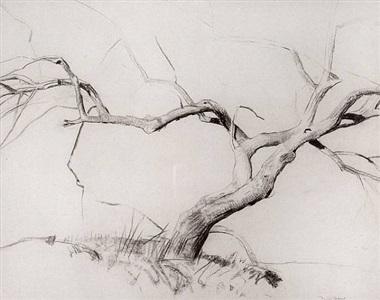 bare tree by daniel garber