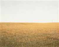 the hindenburg line 1918, the knoll by bart michiels