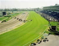 nakayama race-horse-track chiba japan - from the small planet series by naoki honjo