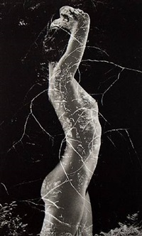 symbiosis by ruth bernhard