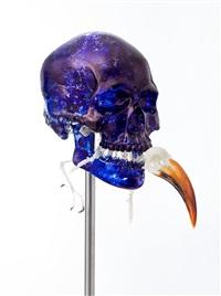 Skull with Von der Decken's Hornbill, 2018