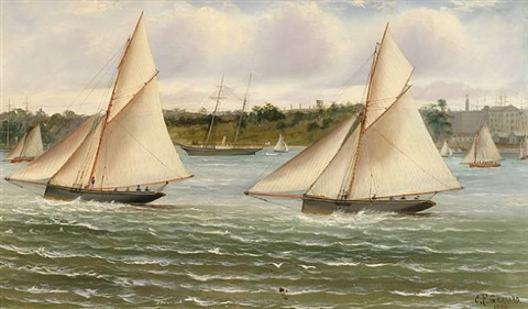 regatta in sydney harbour by charles f. gerrard