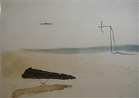 avió planxa aral i submari by josep riera i arago